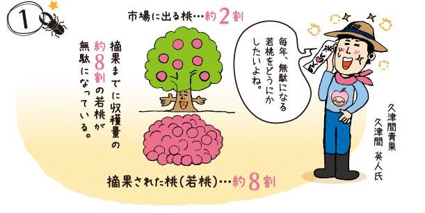 桃の生産量日本一の山梨では毎年5月初旬頃、大きく高品質な桃を育てるため摘果作業が行われている。 山梨・久津間青果の久津間さんは、地元の仲間と協力し商品開発に取り組んだ。